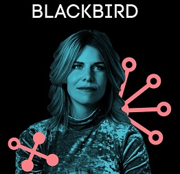 Blackbird profiel